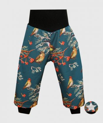 Waterproof Softshell Pants Dark Cyan Birds